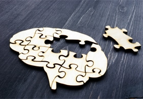 Puzzle shaped as a brain